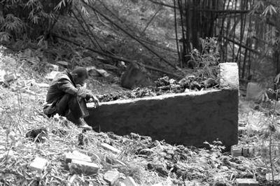 昨日,芦山县赵家坝村,乐建荣坐在妻儿的坟前,低头沉默。本版摄影/新京报特派震区记者 浦峰