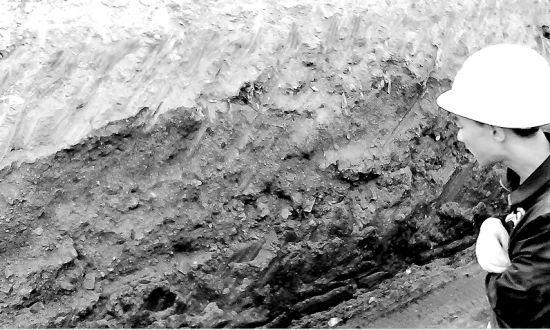 太原西中环改造工地修路挖出煤