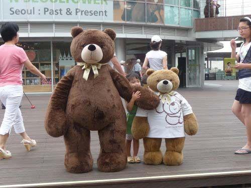 泰迪熊博物馆广场上的两只熊可供游人拍照