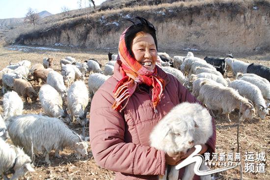 """绛县卫庄镇女""""羊""""倌——熊继萍"""