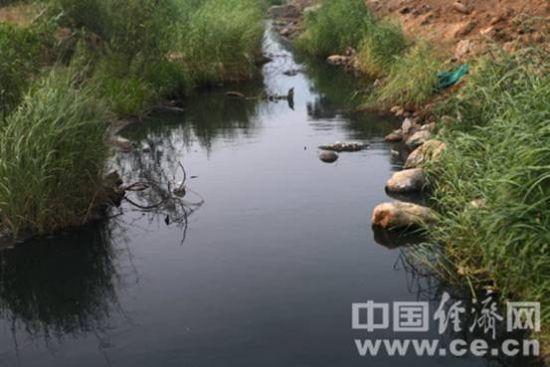 强碱性污水顺着河道流向下游,下游约15公里就是汾河,而汾河在河津市境内注入黄河