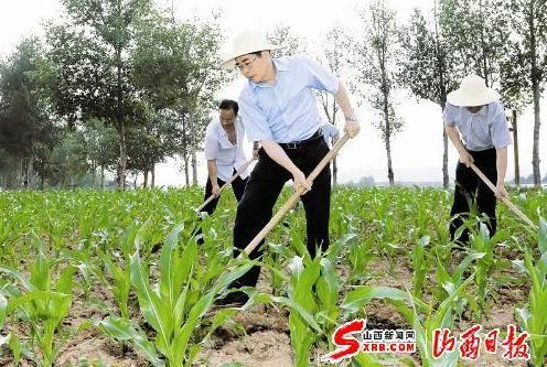 6月18日,省委书记、省人大常委会主任袁纯清在武乡县砖壁村李生祥的玉米地帮助锄草松土