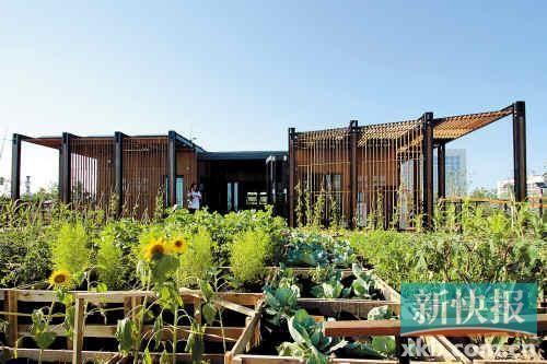 ■华工学生造的太阳能小屋可以拆装,可根据需要随处安家。这是它的外观。