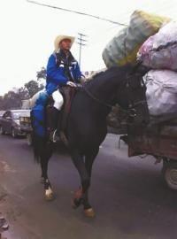 """""""马上哥""""骑马回家引来路人关注。"""