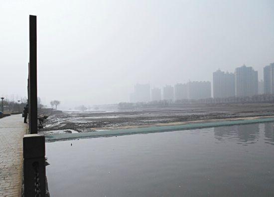 从柴村桥到祥云桥分段进行,换水量约一千万立方米 造成如今一半是碧波,一半是湿地的景象