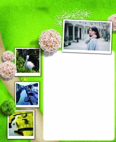 南京现在正是和白鹭约会的季节