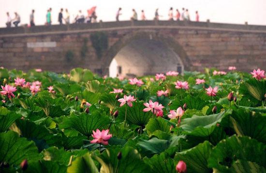 浙江杭州西湖断桥