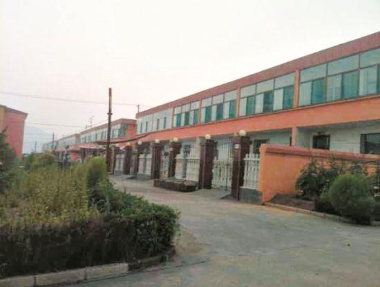在李先生的家乡,很多村民都住着这样的小二楼