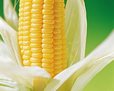 玉米减肥餐