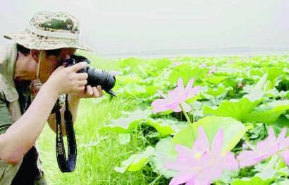 摄影家拍荷花