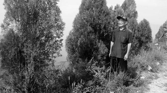 高文毓老人站在绿树丛中