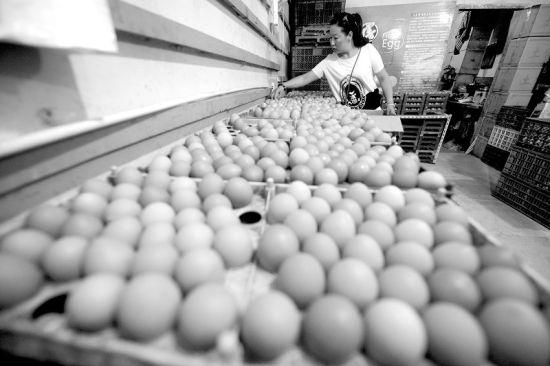 太原鸡蛋价格已接近6元/斤