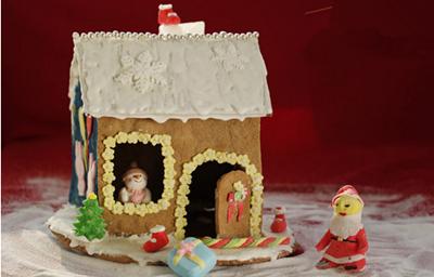 圣诞房子手工制作大全图片
