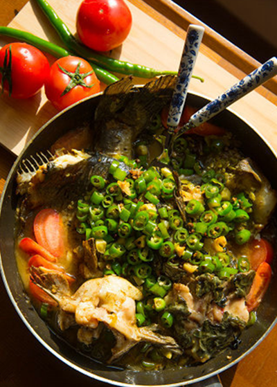 山椒翡翠鮰鱼