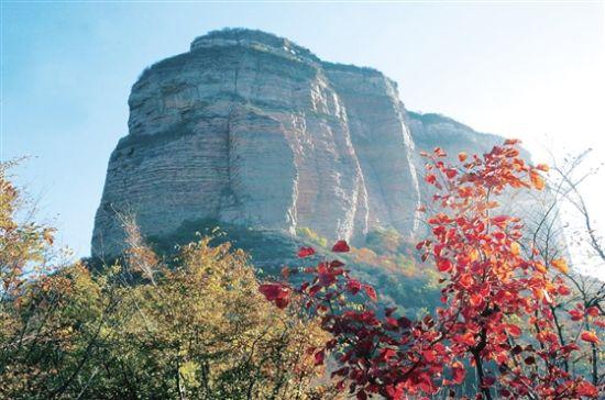 虎头山森林公园先后从北京,石家庄,太原等地引进15个绿化树种,虎头山