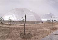 金谷现代农业项目正推进